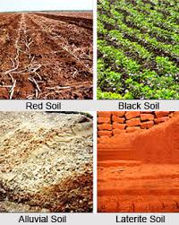 Indian soils a complete overview day today gk for Different types of soil and their characteristics